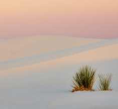 Minimalist Sunset, White Sands, New Mexico by Laura Zirino