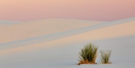 White Sands, New Mexico by Laura Zirino