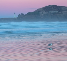Agate Beach Twilight, Newport, Oregon, USA by Richard Sandford