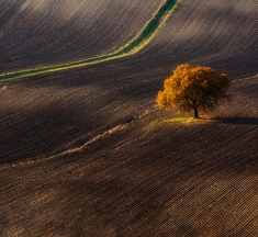 Ururi, Italy by Andrea Mucelli