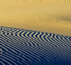 Mesquite Dunes, Death Valley NP, California, USA by James Covello
