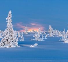 Sjusjoen, Lillehammer, Norway by Magne Dimmen
