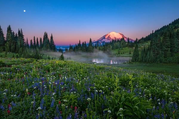 Scott Eliot • Mt Rainier NP, Washington State, USA